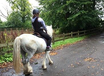 Dean Castle Riding Center in Kilmarnock